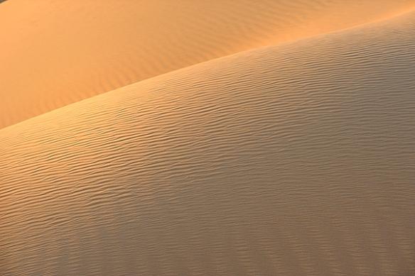 Big-red-simpson-desert-munga-thirri-national-park